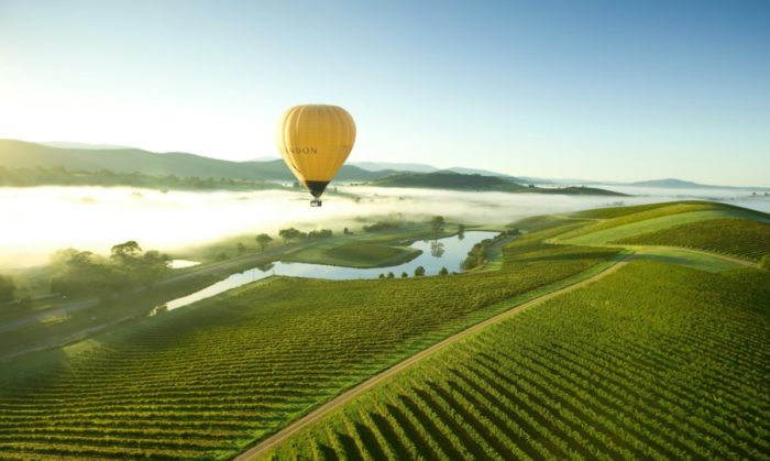 Burgundy at Yarra Valley, Australia hot air balloon