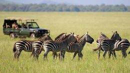 ethically responsible Tanzania safari
