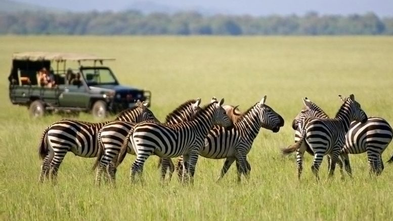 ethically responsible Tanzania safari